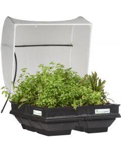 Vegepod Raised Garden Bed With VegeCover- Medium